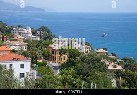 Houses above Santa Margherita Ligure, Genoa province, Liguria region, Italian Riviera, Italy, Mediterranean Sea, - Stock Photo