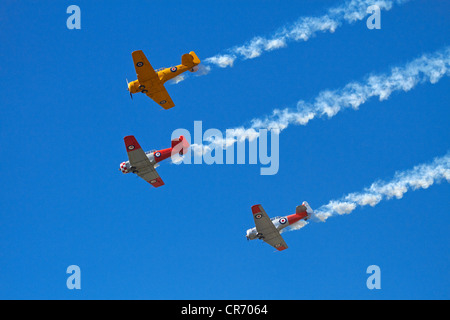 Aerobatic display by North American Harvards, or T-6 Texans, or SNJs - Stock Photo