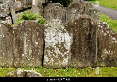 Headstones dating from 19th century in the churchyard of St Eustace Church, Tavistock, Devon, England, United Kingdom, - Stock Photo