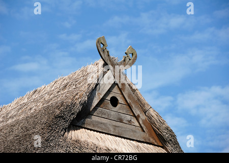 Niedersachsenpferde, gabel cross with symbolic horse heads, and a hole for owls on the gable of a farmhouse against - Stock Photo