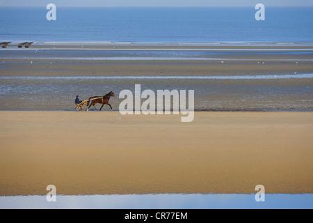 France, Manche, Cotentin, Sainte Marie du Mont, Utah Beach where took place the main American landing of D day, - Stock Photo