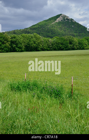 Pinnacle Mountain near Little Rock, Arkansas - Stock Photo