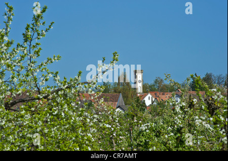 Townscape with Tuermel tower and apple tree blossom, Oberhausen, Pfalz, Rhineland-Palatinate, Germany, Europe - Stock Photo