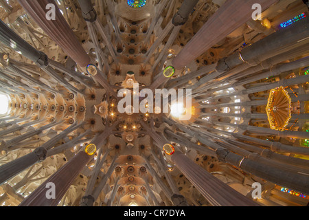 Church ceiling, altar with a baldachin or canopy of state, tree-shaped pillars and ceiling, interior of Sagrada - Stock Photo