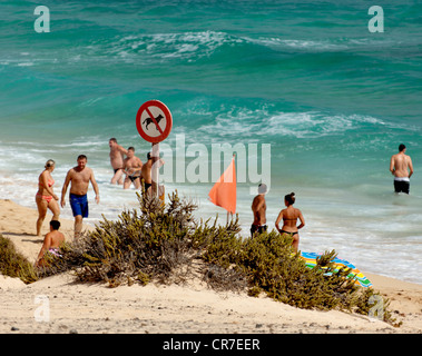 Beach, beach life, sign, no dogs allowed on the beach, Fuerteventura, Canary Islands, Spain, Europe - Stock Photo