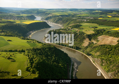 Aerial view, Loreley rock, Oberwesel, Rhine River, low water, Upper Middle Rhine Valley World Heritage site - Stock Photo