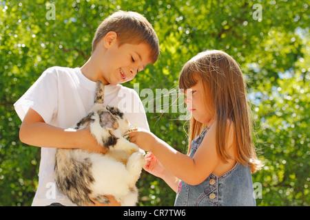 Feeding a rabbit - Stock Photo
