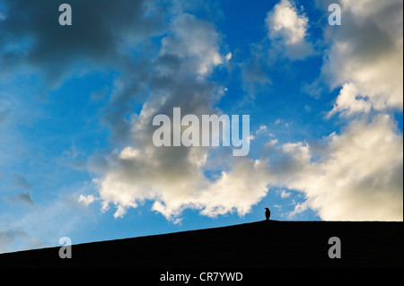 Blackbird silhouetted on roof against puffy white sunset clouds and a clear blue sky - Stock Photo