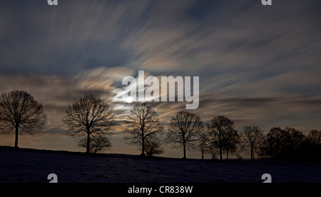 Full moon behind clouds and tree silhouettes at night, long exposure, Altheim, Baden-Wuerttemberg, Germany, Europe - Stock Photo