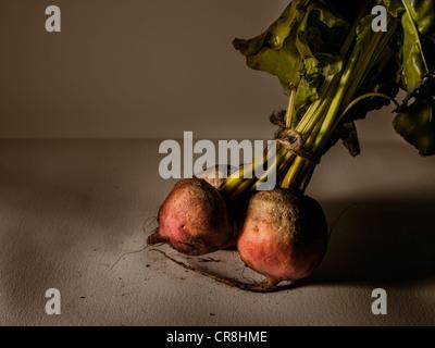 Golden beets - Stock Photo