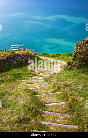 Wooden steps cut into a steep section of the South-West Coast Path near Lynton and Lynmouth, north Devon, England, - Stock Photo
