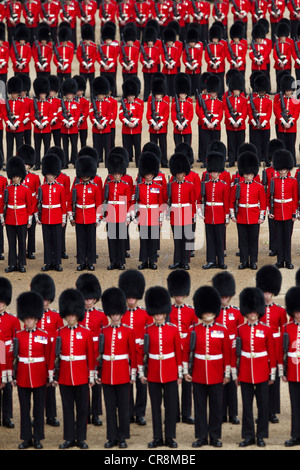 Trooping The Colour, Horse Guards Parade - Stock Photo