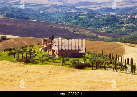 Country house, Asciano, Tuscany, Italy, Europe, PublicGround - Stock Photo