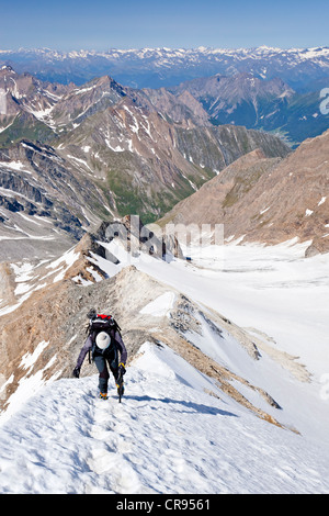 Mountaineer climbing Hochfeiler mountain, Pfitschertal valley and Wipptal valley at the back, province of Bolzano - Stock Photo