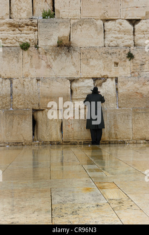 Orthodox Jew praying at the Wailing Wall, old town, Jerusalem, Israel, Middle East - Stock Photo