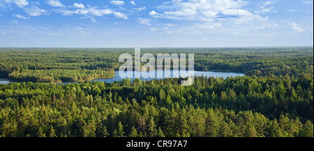 View from Aboda Tower over forests and lakes, Aboda Klint, Smaland, South Sweden, Scandinavia, Europe - Stock Photo