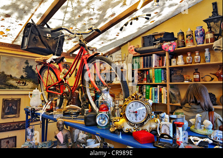 Bicycle and junk, Auer Dult market, Munich, Bavaria, Germany, Europe - Stock Photo