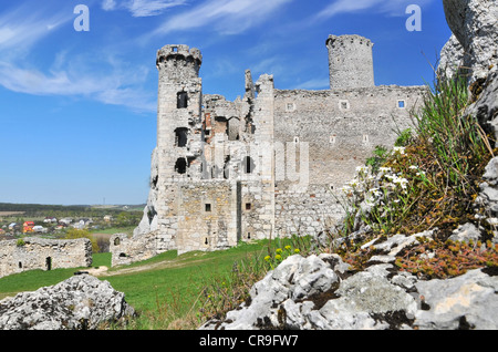 Ruins of medieval castle Ogrodzieniec in Poland - Stock Photo