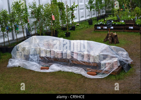 Display of jugs in retail garden area covered up to protect from heavy rain at The Telegraph Hay Festival 2012, - Stock Photo