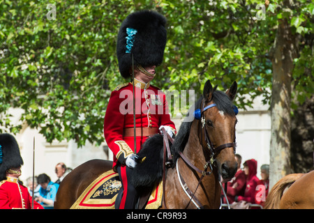 1st battalion Irish guards officer on horseback in the Mall for Trooping The Colour. The Mall, London, UK. - Stock Photo