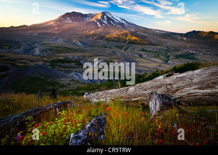 Mount St. Helens National Volcanic Monument - Stock Photo