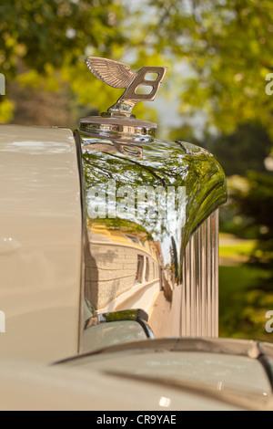 Flying Bentley Hood Ornament - Stock Photo