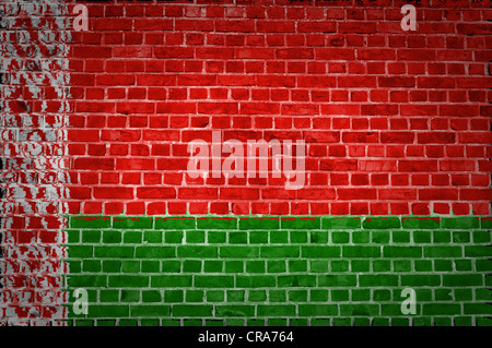 An image of the Belarus flag painted on a brick wall in an urban location - Stock Photo