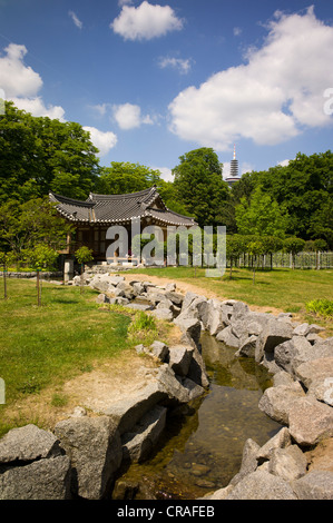 Koreanischer Garten park in the Grueneburgpark gardens, Frankfurter Gruenguertel nature preserve, Frankfurt, Germany, - Stock Photo