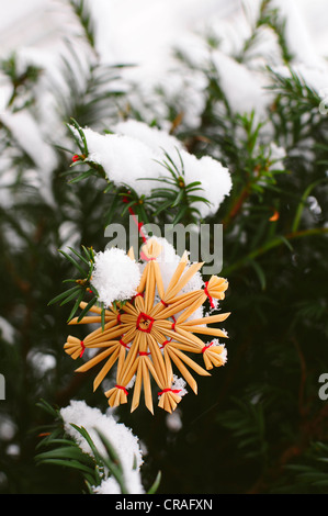Straw star in the snow - Stock Photo