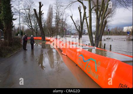 Artificial flood protection dam QUICK DAMM SYSTEM, flooding, Frankfurt, Hesse, Germany, Europe - Stock Photo