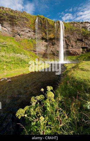 Seljalandsfoss Waterfall, South Iceland, Iceland, Europe - Stock Photo