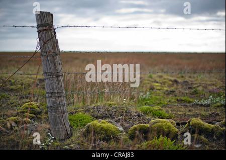 Wooden post and barbed wire, fence near Kirkjubæjarklaustur, Kirkjubaejarklaustur, Skaftárhreppur, Suðurland, Sudurland, - Stock Photo