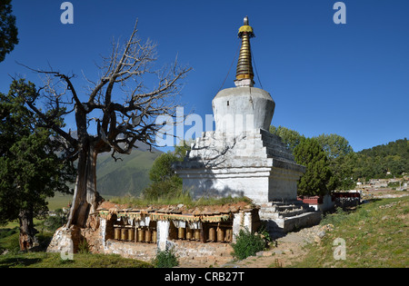 Tibetan Buddhism, centuries-old juniper trees and stupa, chorten in the mountains of Reting Monastery, Mount Gangi - Stock Photo
