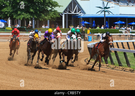 Horses coming into the first turn of a thoroughbred race, - Stock Photo