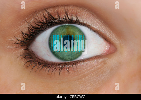 Detailed view of an eye with a barcode being reflected on the iris, EAN, European Article Number, International - Stock Photo