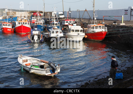 Boats in the fishing port, Skerries, County Fingal, Republic of Ireland, Europe - Stock Photo
