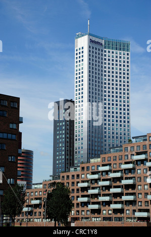 Modern architecture along the Nieuwe Maas River, Spoorweghaven Harbour, Kop van Zuid, Rotterdam, Holland, Nederland, - Stock Photo