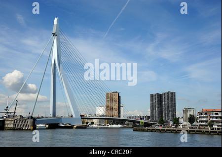 Erasmusbrug, Erasmus Bridge crossing the Nieuwe Maas River, Rotterdam, Holland, Nederland, Netherlands, Europe - Stock Photo