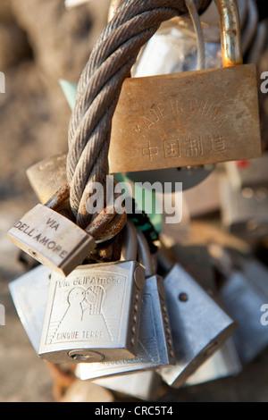 old padlocks on metal fence - Stock Photo