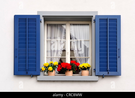 windows with flowers in hanging flower pots from switzerland - Stock Photo