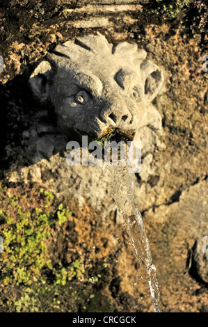 Gargoyle, Viale delle Cento Fontane or Alley of the Hundred Fountains, Garden of the Villa d'Este, UNESCO World - Stock Photo