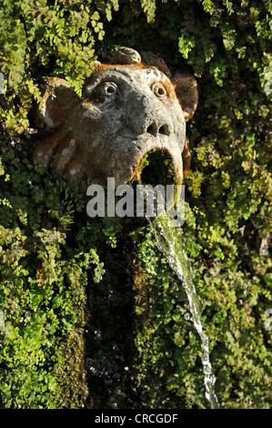 Gargoyle, Viale delle Cento Fontane or Alley of the Hundred Fountains, Garden of the Villa d'Este, UNESCO World - Stock Photo