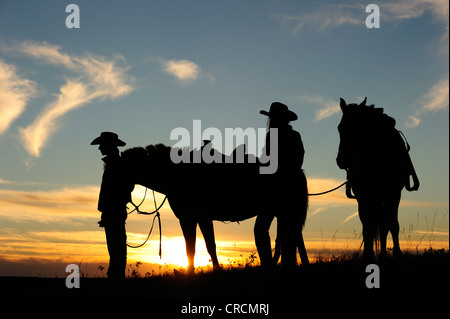 Cowgirl and cowboy with horses at sunset, Saskatchewan, Canada, North America - Stock Photo