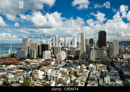 View from Coit Tower over the Financial Centre with the Transamerica Pyramid, San Francisco, California, USA - Stock Photo