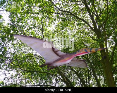 Pterodactylus (Pterodactylus), flying - Stock Photo