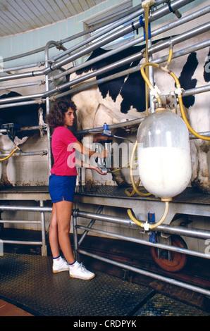 quarryville girls Solanco high school located in quarryville, pennsylvania - pa find solanco  high school test scores, student-teacher ratio, parent reviews and teacher stats.