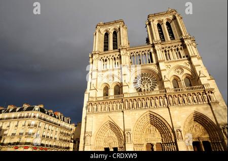 Notre Dame de Paris, western facade, France, Paris - Stock Photo