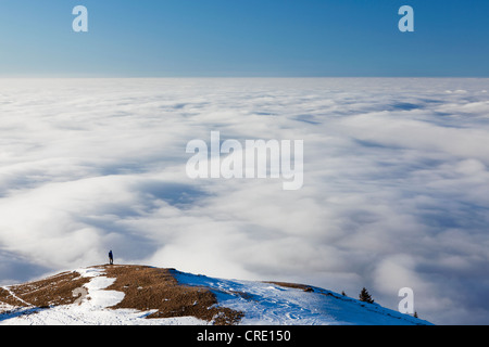 Lonely hiker walking above a sea of fog, low clouds, on Faehnerenspitze mountain in the Appenzell region, Switzerland, - Stock Photo