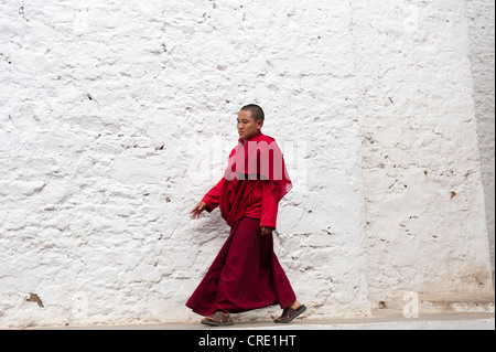 Tibetan Buddhism, monk in a red robe walking in front of a white wall, Tango Goemba Monastery, near Thimphu, the - Stock Photo