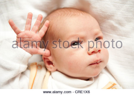 Newborn baby girl, 2 weeks, portrait, head and face, outstretched fingers, small hand - Stock Photo
